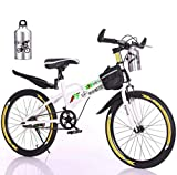 Kids Freestyle BMX Bike, 20in Outdoor Sports Bicycle with Water Bottle Bag Training Wheels Boys Beginner Riders,Level to Advanced Riders, Steel Frame (from US, White)
