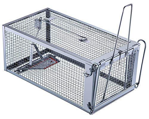 Trap Top Live Animal Trap, Excellent Chipmunks Rats & Mice Humane Cage Trap, Just Catch and Release