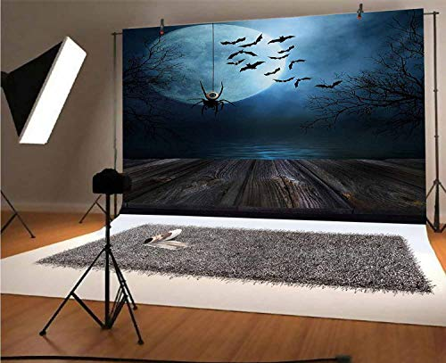 Halloween 7x5 FT Vinyl Photography Backdrop,Misty Lake Scene Rusty Wooden Deck Spider Eyeball and Bats with Ominous Skyline Background for Photo Backdrop Baby Newborn Photo Studio Props