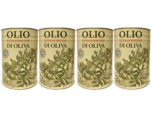 Natives Olivenöl extra del GARDA kaltgepresst (4 X 5 L) Kanister - Olio extra vergine di oliva