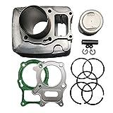 JINFANNIBI Cylinder Piston Ring Gasket Top...