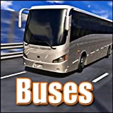 Bus, Transit - 40 Foot Diesel Hybrid Transit Bus: Ext/Int: Pull up, Board, Bus Pulls Away, On Board Driving, Churches, Buses