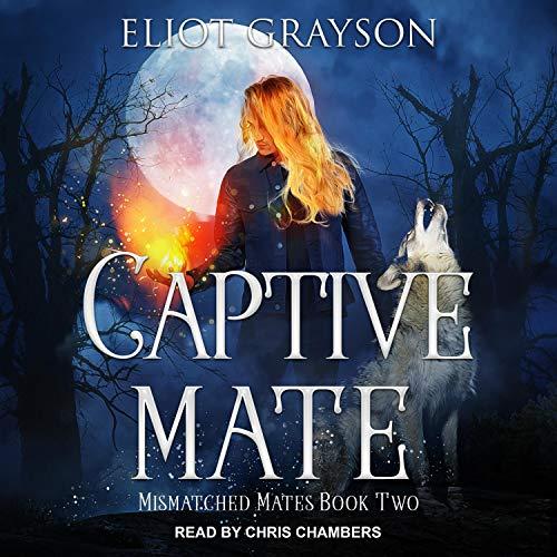 Captive Mate cover art