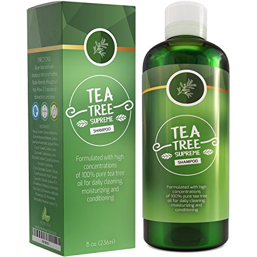 Sulfate Free Tea Tree Shampoo Dandruff Treatment...