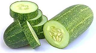 Amae Cucumber, 500g