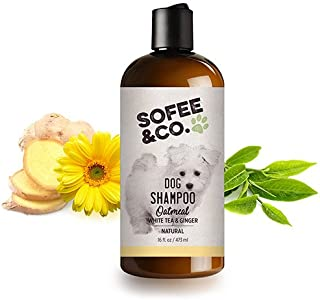 Sofee & Co. Natural Oatmeal Dog Puppy Shampoo - White Tea and Ginger - Clean Moisturize Deodorize Freshen Soothe Soften Normal Dry Itchy Flaky Allergy Sensitive Skin. 16oz