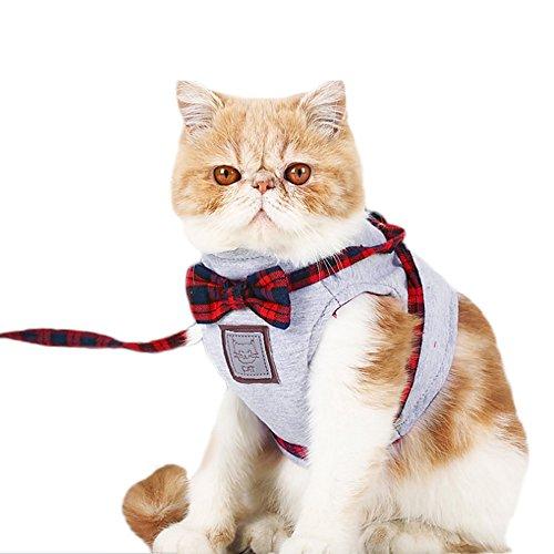 Decdeal - Arnés de Chaleco con Correa para Gatos Estilo Escocés Hechos de Tela y Algodón Chaleco con Correa para Perros Gatitos