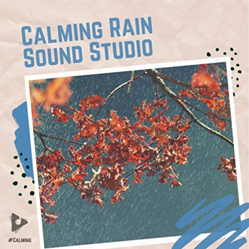#Calming, Rain Sounds Nature Collection & Rain Atmospheres