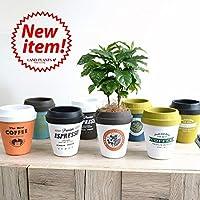 LAND PLANTS 植木鉢 コーヒーの木 コーヒーカップ型 陶器鉢 Mサイズ チルドカップ 3号・4号 ネイビー×オリーブ