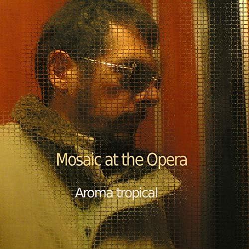 Mosaic at the Opera