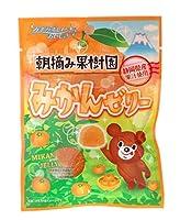 八雲製菓 みかんゼリー 45g×6袋