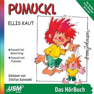 Pumuckl und der Geburtstag audiobook cover art