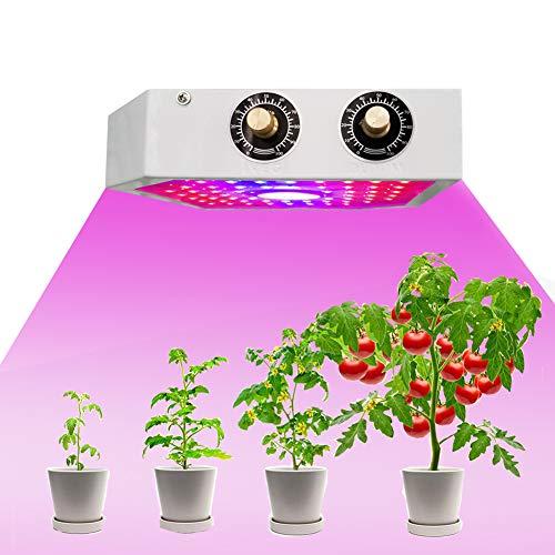 MTSBW Pflanzenwachstum Licht, LED-Anlage Supplement Licht, Dual-Chip (10W) LED, Cob Chip mit starken Helligkeit, 3 6 12H Timer, kann für Gartenarbeit, Heimgewächshaus Einpflanzen verwendet Werden