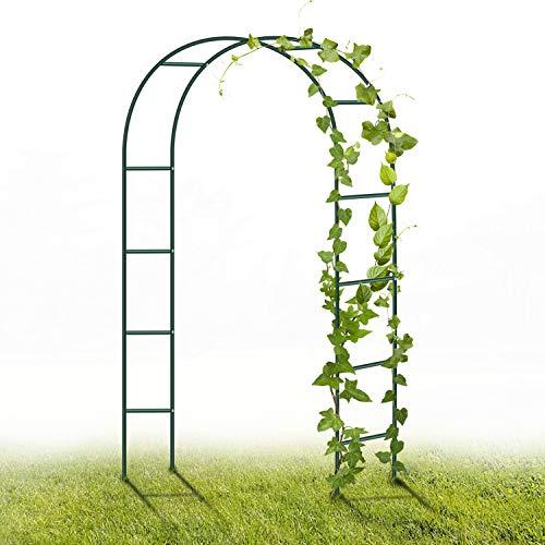 YAOBLUESEA Metal Garden Arch, 2.4M Garden Archway Enrejado de Acero con Revestimiento en Polvo para Plantas Soporte Rosas Escalada Archway Jardín Decoración (Verde Oscuro)