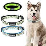 SCENEREAL Cute Dog Collar Glow-in-The-Dark, 2 Pack Adjustable Lighted Puppy Collars for Small Medium Dogs