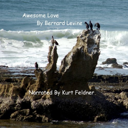 Awesome Love audiobook cover art