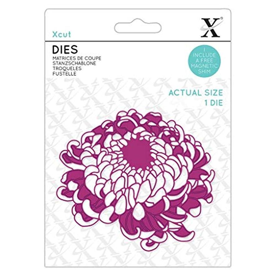 XCUT Die-Cut, Purple, One Size