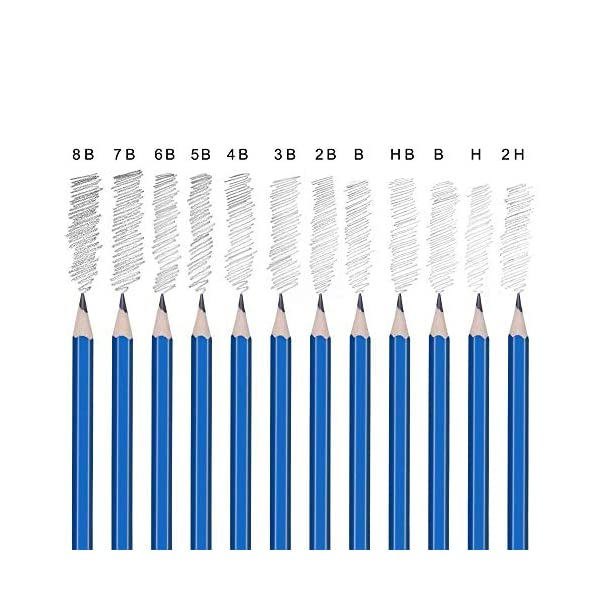 Lapices de Colores,Lapices Acuarelables,Lápices de Dibujo y Bosquejo Material de dibujo- 54Pcs Dibujo Artístico Profesional lápices Set en estuches escolares – Ideal para la pintura creativa