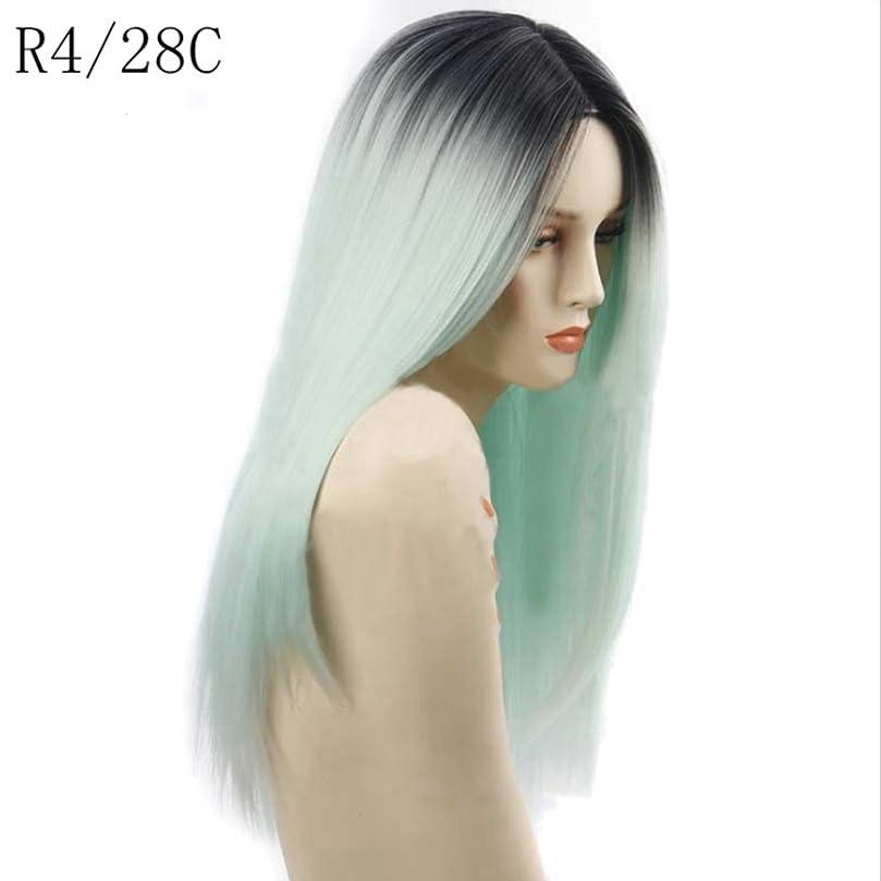 リットル鷹理想的JIANFU 女性のための高温ウィッグフラットバンズウィッグの長いストレートヘア26inchの長さの自然な色のグラデーション (Color : R4/28#)