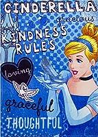 5871 ディズニープリンセス シンデレラ フリース ブランケット 毛布 ひざ掛け 120cm x 90cm Disney princess fleece blanket [並行輸入品]