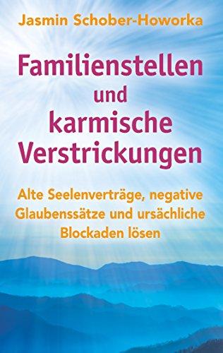 Familienstellen und karmische Verstrickungen: Ein spannendes Praxisbuch mit vielen Fallbeispielen. Mit neu entwickelten Methoden und Lösungssätzen