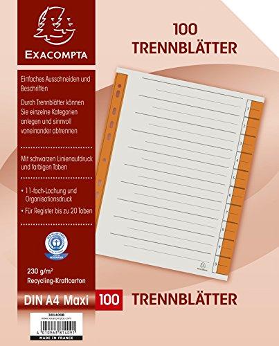 Exacompta 381409B Trennblätter (Kraftkarton, 230g, 6 fach Lochung, Organisationsdruck, DIN A4) 100er Pack, orange