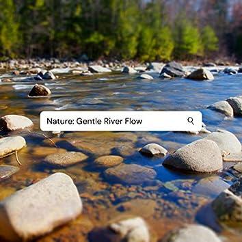 Nature: Gentle River Flow