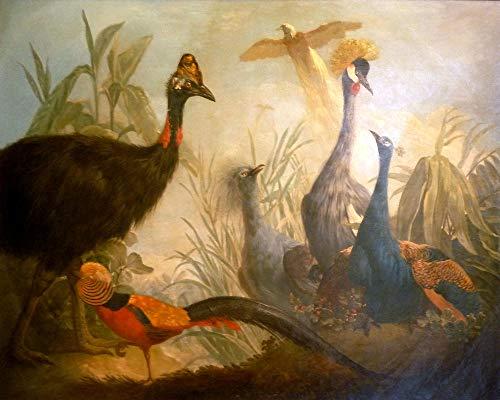 DIY Schilderen op nummerHand schilderijHonderd vogels feniks figuur frameloos 40x50cm