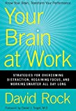 Your Brain at Work - Strategies for Overcoming Distraction, Regaining Focus, and Working Smarter All Day Long