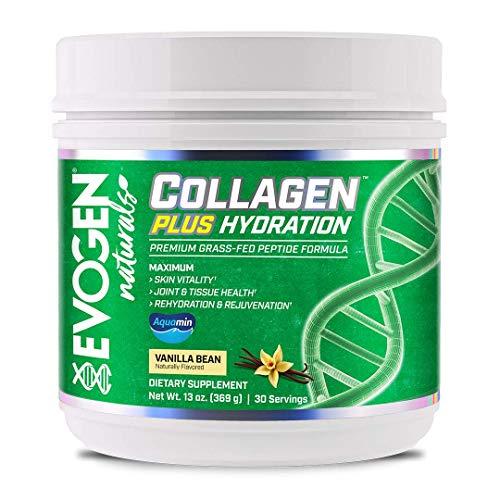 Evogen Collagen Plus Hydration, Vanilla Bean, 369g