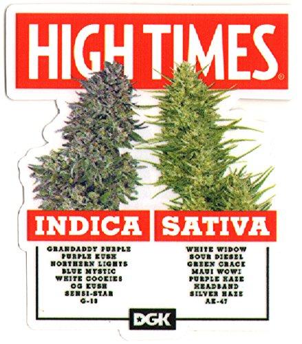 DGK x High Times - Options Skateboard Sticker - 11.5cm high approx. cannabis ganja weed marijuana spliff (Best Performing Marijuana Stocks 2019)