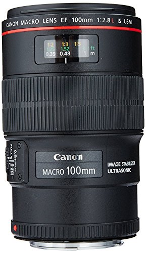 small Canon EF 100mm f / 2.8L USM Macro Lens for Canon DSLRs (Updated)