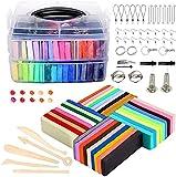 WisToyz Lot d'argile polymère – 36 couleurs au four, argile polymère, blocs d'argile à modeler à l'air libre avec outils de modelage, doux et non toxique Meilleur cadeau pour les enfants