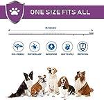 Virbac Preventic Tick Collier, grand chien, 63,5cm, 2-pack #2