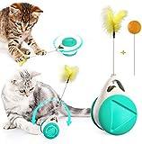 SunAurora Juguetes para Gatos, Multifunción Juguetes para Gatos Interactivos, Juguetes para Gatos con Hierba Gatera, Pluma y Bola