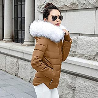 Fashion Keep Warm Winter Jacket Women Parkas for Coat Fashion Female Down Jacket With a Hood Large Faux Fur Collar Coat Autumn Outwear Ladies (Color : Clear, Size : L)