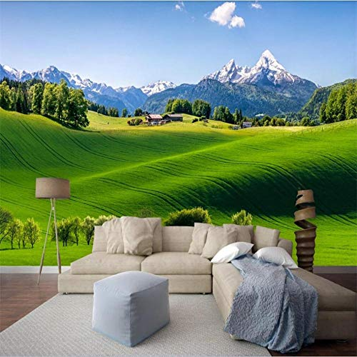 muurschildering muur Muralscustom behang vers groen landelijk landschap achtergrond muur decoratie schilderen waterdicht materiaal About 200*140cm 2 stripes
