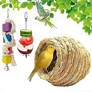 ODOOKON Nid d'oiseau, Jouets pour Oiseaux pour Perroquets, Distributeur de Fruits, nid d'oiseau en Paille tissée à la Main, écloserie, élevage de grottes pour Perroquet canari Pinson