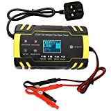 Dandelionsky 6226128625237, 12V 24V 3-Stage Automatic Trickle Battery Charger Maintainer With LCD Screen