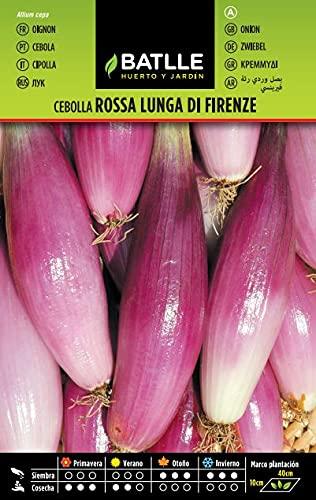 Semillas Hortícolas - Cebolla Rosa Lung Firenza - Batlle
