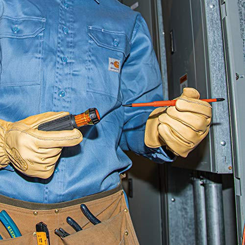 Klein Tools 32293 Insulated Screwdriver, 2-in-1 Screwdriver Set with Flip Blade, #2 Phillips and1/4-Inch Slotted Tips, Double-Ended Blades