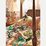 Pintura de diamante 5D Flor animal gato en la cama Diamond Painting Kit Completo Bordado De Punto De Cruz Diamante para Decoración de la Pared del Hogar30x40 cm(Sin marco)