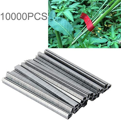 Preisvergleich Produktbild WXX 10000 STÜCKE Bindemittel Nägel Garten Nägel Krawatte Nägel Klebeband Werkzeug Binder Nagel Tapener zum Binden Tapetool Pfropfmaschine