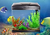 JBA 20L Medium Nano Starter Aquarium Fish Tank Tropical/Coldwater with Integrated LED Light - Free Fast Delivery (20L, BLACK)