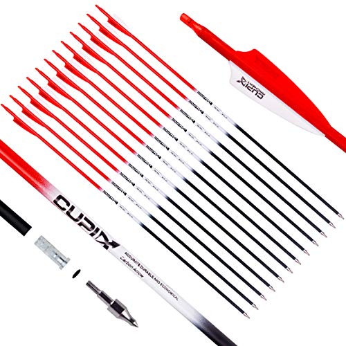 LWANO Carbon Arrow Archery 30inch Hunting Target Practice Arrows for Compound & Recurve Bow Spine 500 with Removable Tips (Pack of 12)(Red)