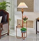 16LYP Amerikanische Stehlampe Moderne im europäischen Stil Regale Edelstahl-Leuchte Wohnzimmer Schlafzimmer Lichter / 2 Farben (Color : B-B)