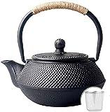 DXX-HR Juegos de té Hervidor de hierro fundido para té verde con infusor en la estufa 600 ml