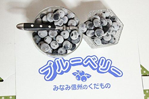 ガーデンベリー佐々木 冷凍 ブルーベリー 大粒ギフト 1�`