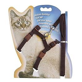 YiZYiF Pet Cat Kitten Adjustable Harness Collar Lead Leash Set
