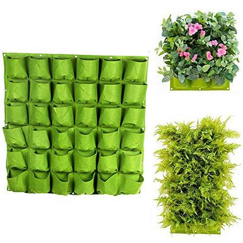 VOANZO Green Garden - Macetero vertical multibolsillo para colgar en la pared, fieltro, para interiores y exteriores, 36 bolsillos (100 x 100 cm)